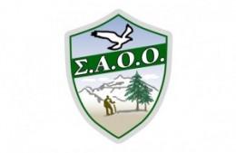 SAOO-LOGO-625-300x196